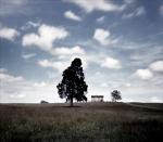 Henry Hill House at Manassas Battlefield, Virginia