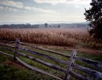 The Mumma Farm, and the approaches to the Sunken Road, the Battlefield of Antietam, Sharpsburg, MD. 2012