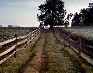 Mumma Cemetery, Battlefield at Antietam, Sharpsburg, MD. 2012