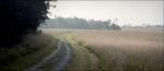 Robinson Farm, Manassas Battlefield, VA. 2011