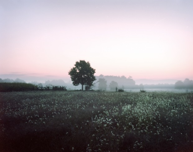 Dawn at Antietam, 150th anniversary of the battle.  Sharpsburg, MD. 2012