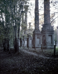 Windsor Ruins on the old Rodney Road, Port Gibson, MS. 2012