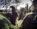 Steep ravines choked with vegetation make up the bizarre landscape around Vicksburg, MS. 2012