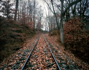 The old Richmond/Fredericksburg and Petersburg Railroad line near the Slaughter Pen Farm