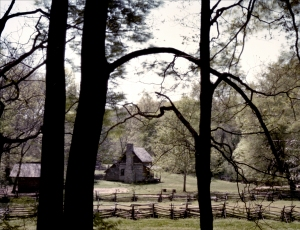 Old Homestead along the Natchez Trace, TN. 2012