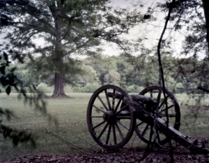 Confederate guns opposite the Hornets Nest at Shiloh Military Park