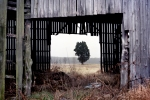 The Slaughter Pen Farm on the battlefield of Fredericksburg, VA.  Looking through an old barn toward the Union advance and the RF&P Railroad, Fredericksburg, VA. 2012
