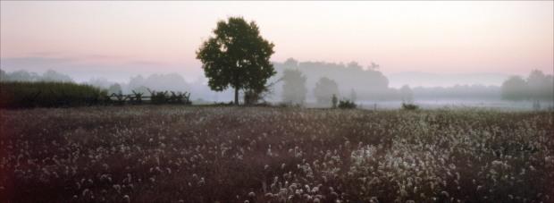 Dawn at Antietam on the 150th anniversary of the battle. Sharpsburg, Md. 2012