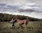 A horse is taken for grazing during the reenactment of the Battle of Chancellorsville in Spotsylvania County, Va 2013.