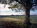 The site of Jackson's flank attack on the Battlefield at Chancellorsville, Va 2013