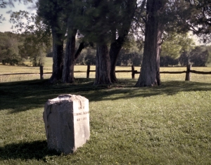 Marker of Stonewall Jackson's arm buried at Ellwood Manor the evening on May 2nd. 1863.  Orange County, Va 2013.