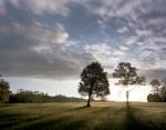 Fairview at sunrise on the Battlefield at Chancellorsville, Va 2013.
