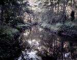 Beaver Dam Creek, Va 2012
