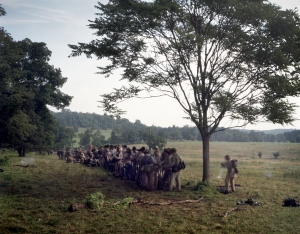 "Confederate troops form-up at the base of ""Culps Hill"". 2013"