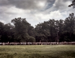 Rebels emerge from the woods to begin Pickett's Charge. Gettysburg. 2013