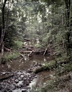 Willoughby Run, McPherson's Ridge, Gettysburg, Pa 2013