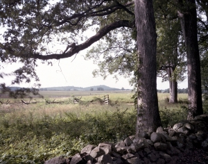 Longstreet's view from Seminary Ridge to the Round Tops. 2013