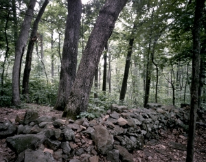The rock wall hastily constructed by the 20th Maine on July 2nd. 1863 on Little Round Top. 2013