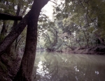 The dark and deep Chickamauga Creek. 2013.