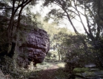 Rock formations below the crest of Lookout Mountain, Tn 2013.