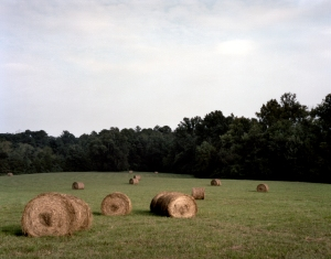 Hay bales in Viniard Field on the Battlefield at Chickamauga, Ga 2013