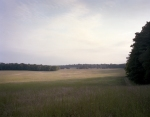 The Dyer Field bathed in late day light on the Battlefield at Chickamauga, Ga 2013