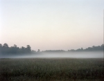 Morning mist covers the Dyer Field on the Battlefield at Chickamauga, Ga 2013.