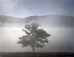 Mist shrouds historic McLemore's Cove in Chickamauga, Ga. 2013