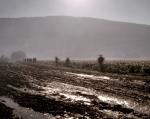 Reenactors skirt a muddy road during a reenactment of the Battle of Chickamauga, Ga 2013.