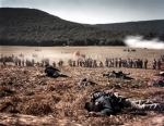 """Confederate troops attack """"Snodgrass Hill"""" in a reenactment of the Battle of Chickamauga, Ga 2013"""