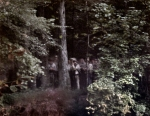Confederates emerge in the forest during a reenactment of the Battle of Chickamauga, Ga 2013.
