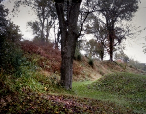 Earthen fortifications and trenches at Fort Defiance, Clarksville, TN 2013.