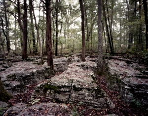 """The Slaughter Pen"" limestone outcroppings amongst the cedars on the Battlefield at Stones River. 2013"