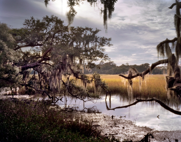 Swamps and salt marshes surround Boone Hall Plantation in Mount Pleasant, SC 2013