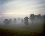 Morning fog shrouds the Bloody Angle on the Battlefield at Spotsylvania 2014