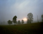 Rising sun breaks through the fog near the Bloody Angle at Spotsylvania 2014
