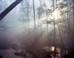 Sunrise through gun-smoke in Mosley, Va 2014