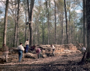 Civil War era earthworks constructed in Mosley Virginia 2014