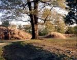 Earthen walls of Fort Harrison, Richmond, Va 2014