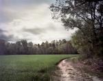 Totopotomoy Creek Battlefield, Va 2014