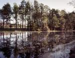 Cold Harbor Battlefield 2014