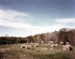 The Higgerson Farm on the Wilderness Battlefield 2014