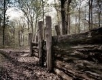 Reconstructed section of earthworks on the battlefield at Spotsylvania 2014