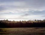 View from the Harrison House into the Virginia wilderness at Spotsylvania 2014