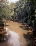 Peachtree Creek, Atlanta, Ga