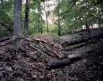 Confederate trenches on Pigeon Hill