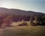 Chattahoochee State Forest, Dalton, Ga 2014