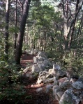 The rock wall of boulders constructed by Confederates in 1864 at Dug Gap