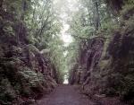 The historic deep cut Allatoona Pass in Bartow County, Ga