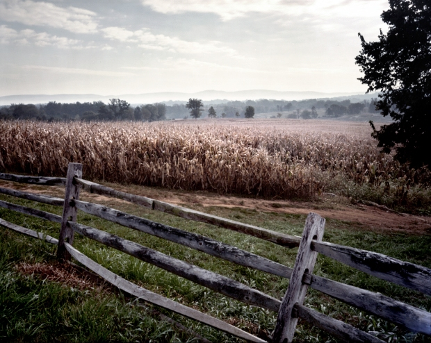 Union troops crossed these fields on the Roulette Farm during the attack on the Sunken Road at the Battle of Antietam in Sharpsburg, Maryland 1862
